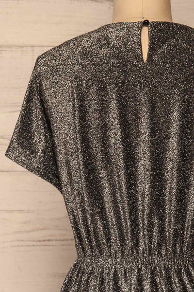 Dobele Silver Sparkling Short Sleeve Dress | La petite garçonne back close-up