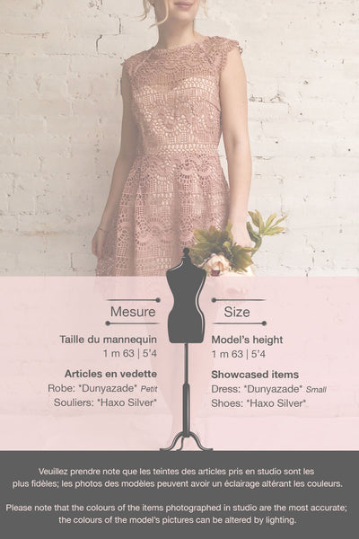 Dunyazade Pink Short Lace Dress w/ Open Back | Boudoir 1861 template