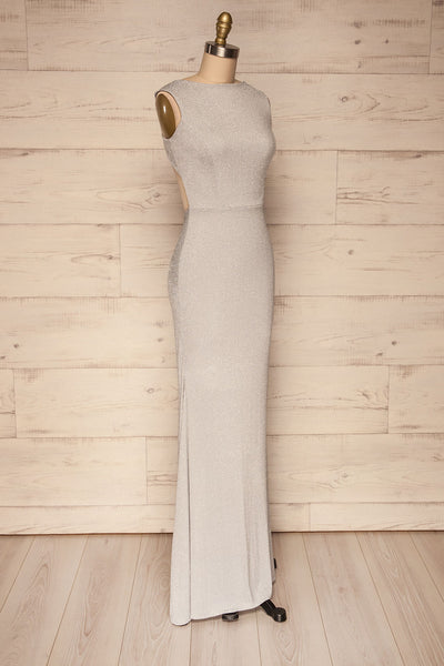 Farbrors Silver Maxi Dress | Robe | La Petite Garçonne side view