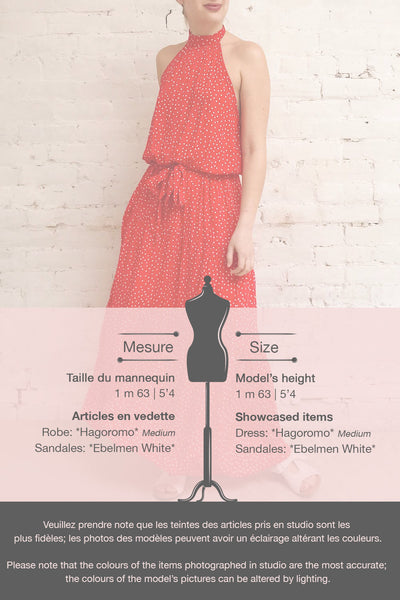 Hagoromo Red & White Polka Dots Maxi Dress | La petite garçonne template