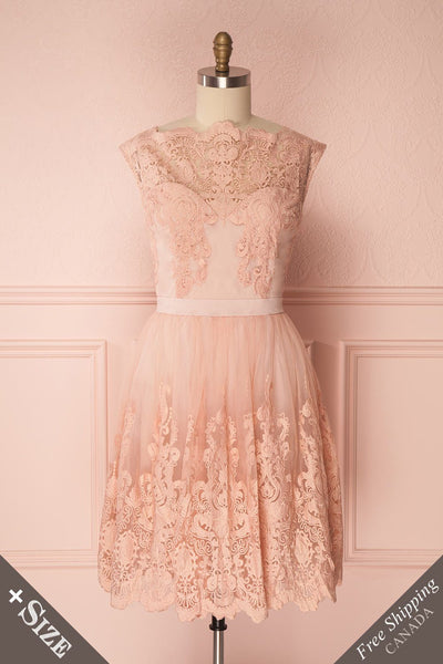 Josaia Blush Embroidered Lace A-Line Dress | Boutique 1861