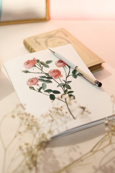 Journal Rosier 1861 Exclusive Notebook | La Petite Garçonne Chpt. 2 2
