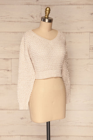 Krinidhes Ivory Chenille Cropped Sweater | La Petite Garçonne side view