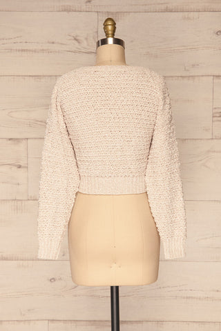Krinidhes Ivory Chenille Cropped Sweater | La Petite Garçonne back view