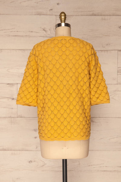 Krynica Sun Yellow V-Neck Knit Top | La petite garçonne back view
