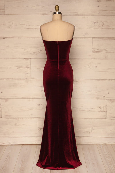 Kubra Burgundy Velvet Maxi Dress | Robe | La Petite Garçonne back view