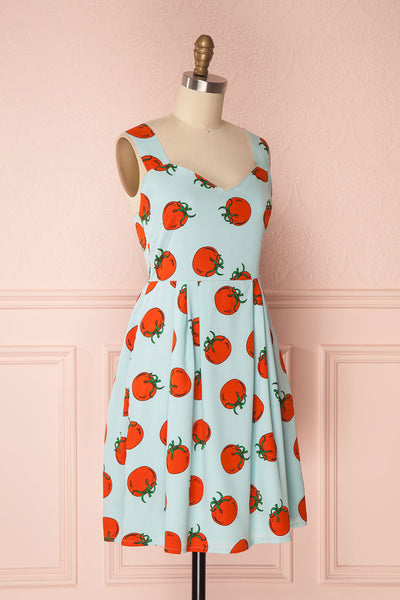 Levana Sky Blue Tomato Print A-Line Summer Dress | Boutique 1861