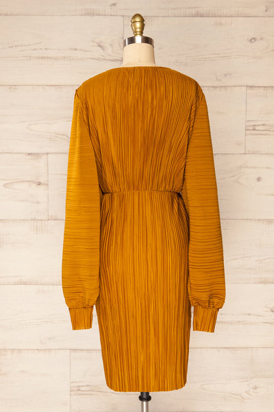 Lamia Mustard Long Sleeve V-Neck Midi Dress | La petite garçonne back view
