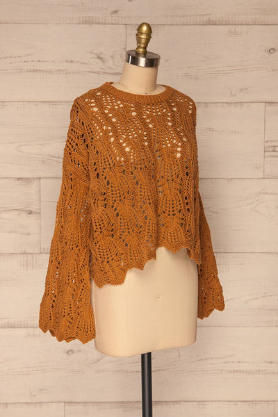 Lesko Brown Crochet Knit Top | La petite garçonne  side view