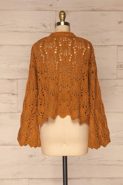 Lesko Brown Crochet Knit Top | La petite garçonne  back view
