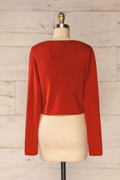 Lixa Rust Orange Faux-Wrap Long Sleeve Top | La petite garçonne back view