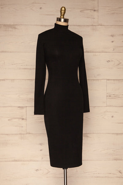 Messina Black Mock Neck Fitted Dress | La petite garçonne  side view
