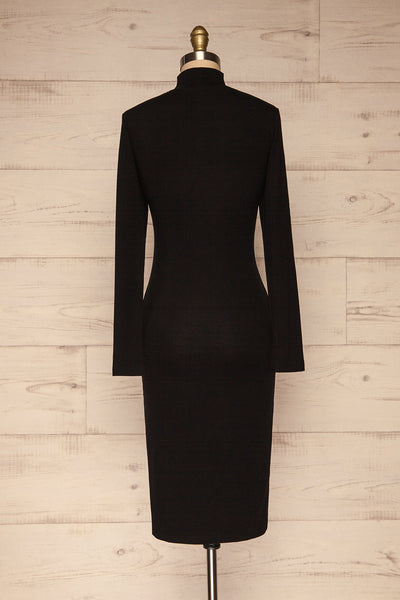 Messina Black Mock Neck Fitted Dress | La petite garçonne  back view