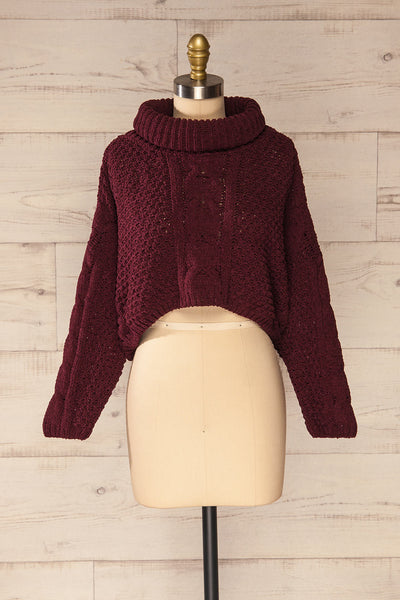 Nakka Burgundy Cropped Knit Sweater | La petite garçonne front view