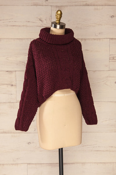 Nakka Burgundy Cropped Knit Sweater | La petite garçonne side view