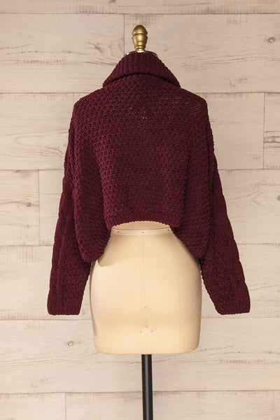 Nakka Burgundy Cropped Knit Sweater | La petite garçonne back view