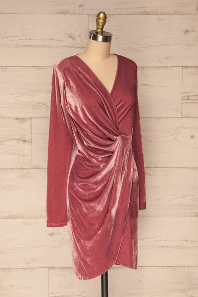 Olawa Pink Long Sleeve Velvet Dress | La petite garçonne  side view