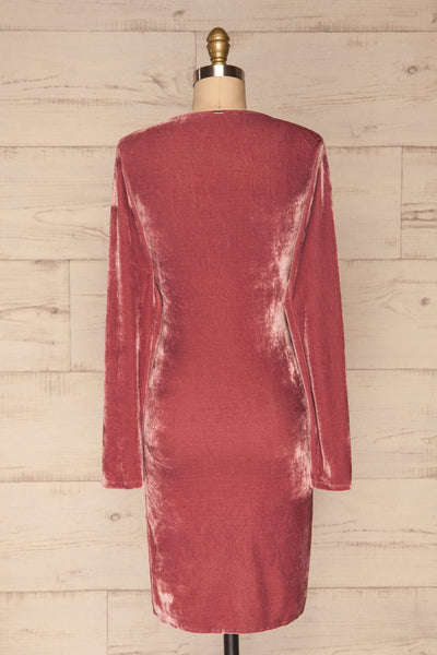 Olawa Pink Long Sleeve Velvet Dress | La petite garçonne  back view
