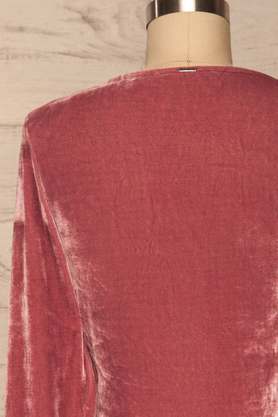 Olawa Pink Long Sleeve Velvet Dress | La petite garçonne  back close up
