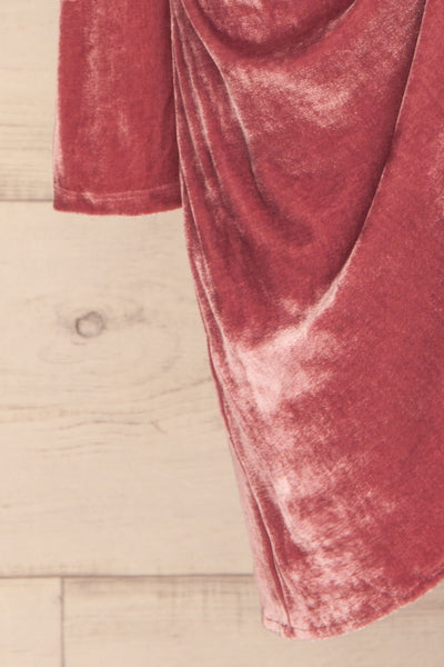 Olawa Pink Long Sleeve Velvet Dress | La petite garçonne  sleeve
