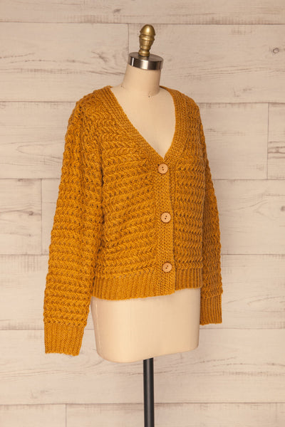 Ozimek Yellow Button-Up Knitted Cardigan | La petite garçonne side view