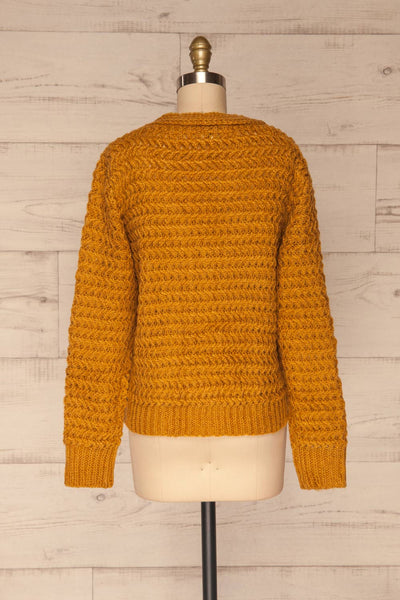 Ozimek Yellow Button-Up Knitted Cardigan | La petite garçonne back view