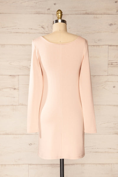 Pasly Blush Long Sleeve Cotton Dress | La petite garçonne back view