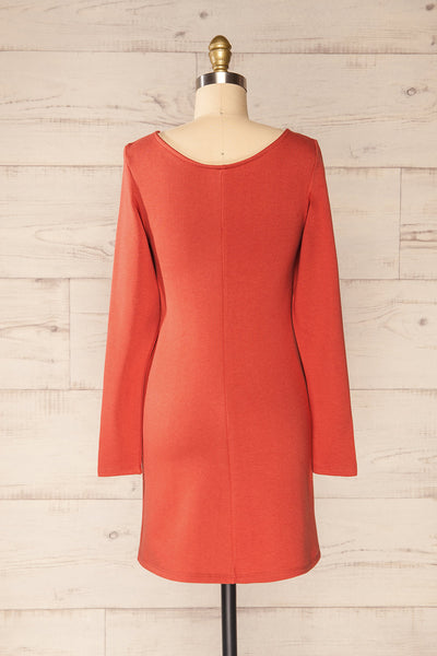 Pasly Rust Long Sleeve Cotton Dress | La petite garçonne back view
