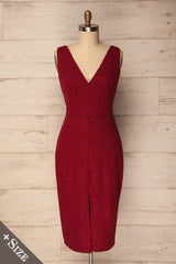Recale Burgundy Sparkly Plus Size Sheath Dress | La Petite Garçonne