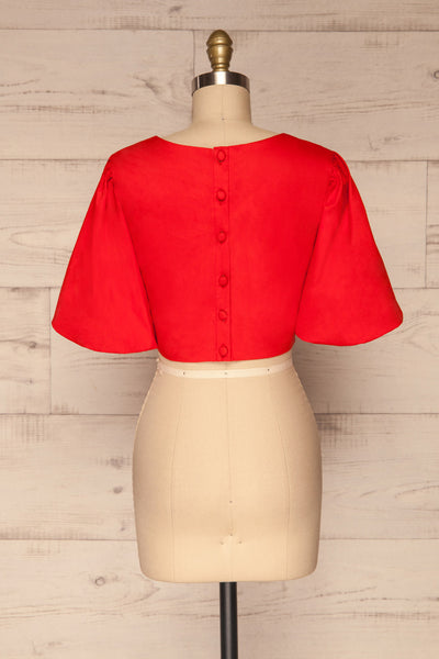 Rydzyna Red Short-Sleeved Crop Top | La petite garçonne back view