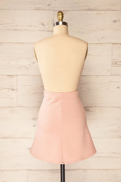 Set Ronda Blush Crop Top & Skirt Set | La petite garçonne back view