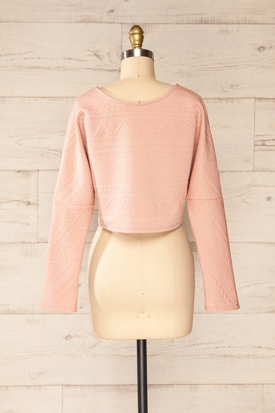 Set Ronda Blush Crop Top & Skirt Set | La petite garçonne top back view