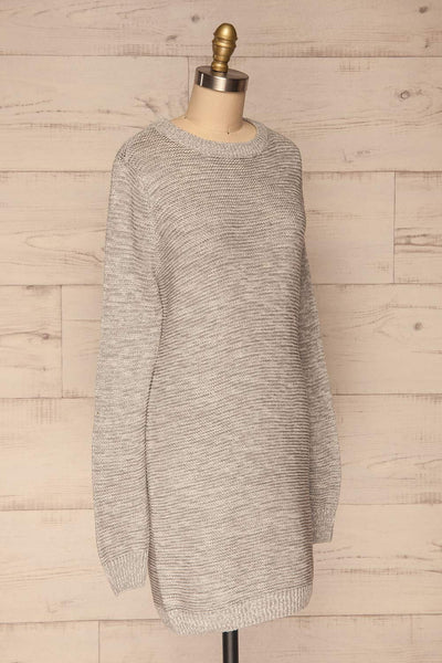 Sorinnes Sweater Dress | Robe Grise | La Petite Garçonne side view