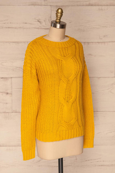 Temerin Sunflower Knit Sweater | Tricot | La Petite Garçonne side view