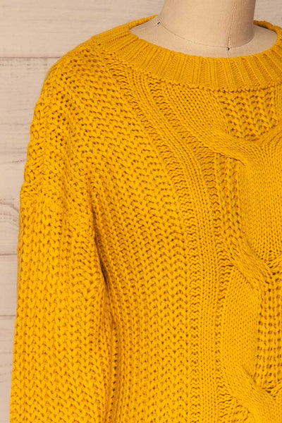 Temerin Sunflower Knit Sweater | Tricot | La Petite Garçonne side close-up