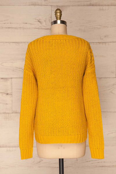 Temerin Sunflower Knit Sweater | Tricot | La Petite Garçonne back view
