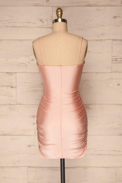 Unice Blush Silky Fitted Cocktail Dress | La petite garçonne back view