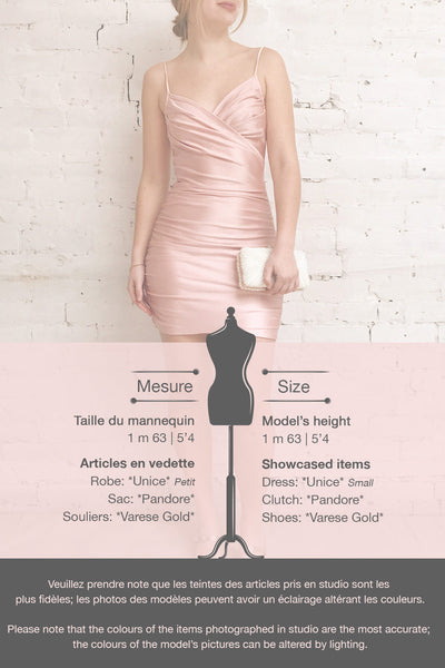 Unice Blush Silky Fitted Cocktail Dress | La petite garçonne template