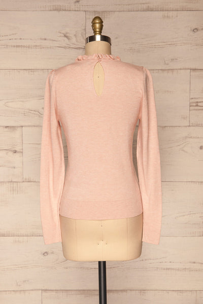 Wigan Rose Knit Sweater | Tricot Rose | La petite garçonne back view