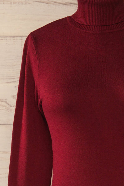 Winschoten Burgundy Long Sleeve Turtleneck | La petite garçonne front close-up