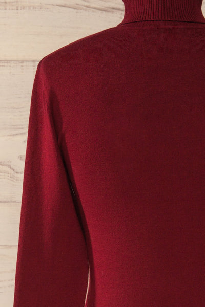 Winschoten Burgundy Long Sleeve Turtleneck | La petite garçonne back close-up