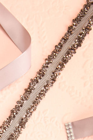 Alfifa Gris Silver Grey Ribbon Belt with Crystals | Boudoir 1861 flat view