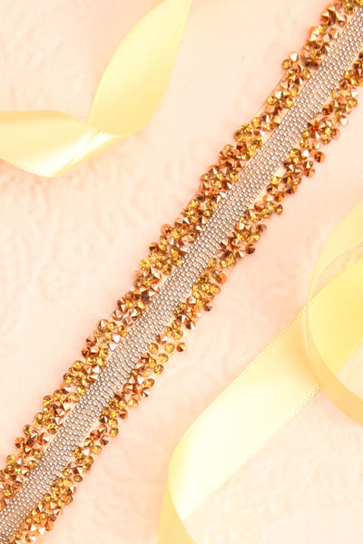Alfifa Or Golden Yellow Ribbon Belt with Crystals | Boudoir 1861 flat close-up