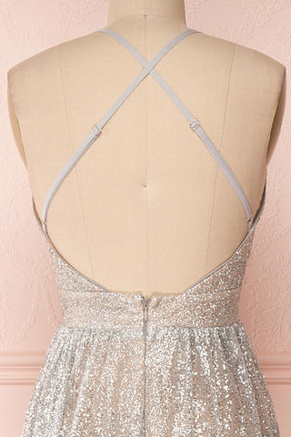 Anice Silver Glittery Dress | Robe Argent | Boutique 1861 back close-up