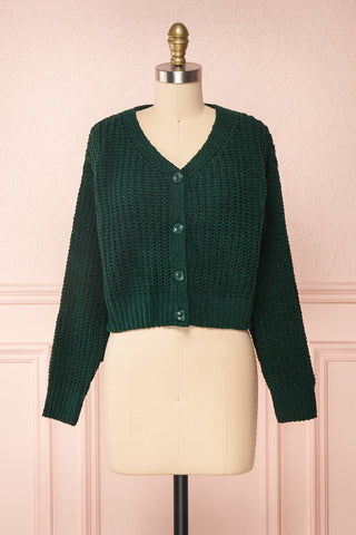 Anja Green Fuzzy Knit Button-Up Cardigan | Boutique 1861 front view
