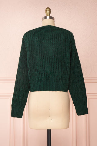 Anja Green Fuzzy Knit Button-Up Cardigan | Boutique 1861 back view