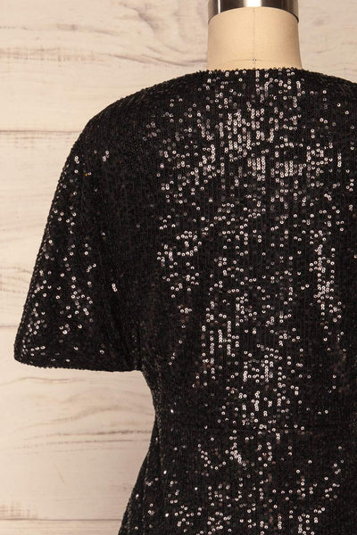 Biccari Black Short Sequin Dress back close up | La Petite Garçonne
