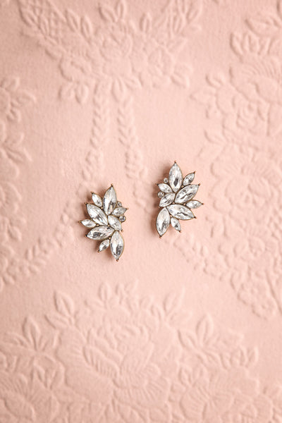 Bonum Crystal Statement Stud Earrings | Boutique 1861