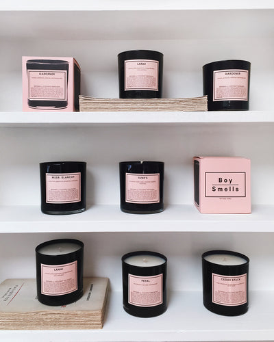 Chandelle Gardener Perfumed Candle with other fragrances | La Petite Garçonne Chpt. 2 5