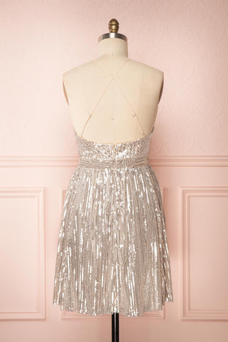 Brigitte Silver Plus Size Party Dress | Robe | Boutique 1861 back view